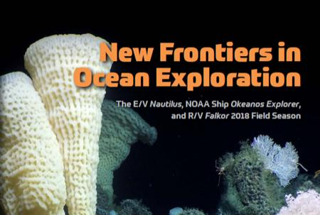 Cover of the supplement issue showing undersea photo of deep-sea sponge, coral, and squat lobsters.